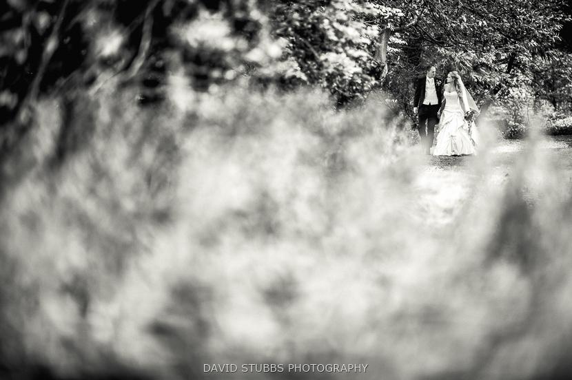 stood behind bush