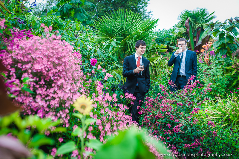 guests amongst the estate flowers