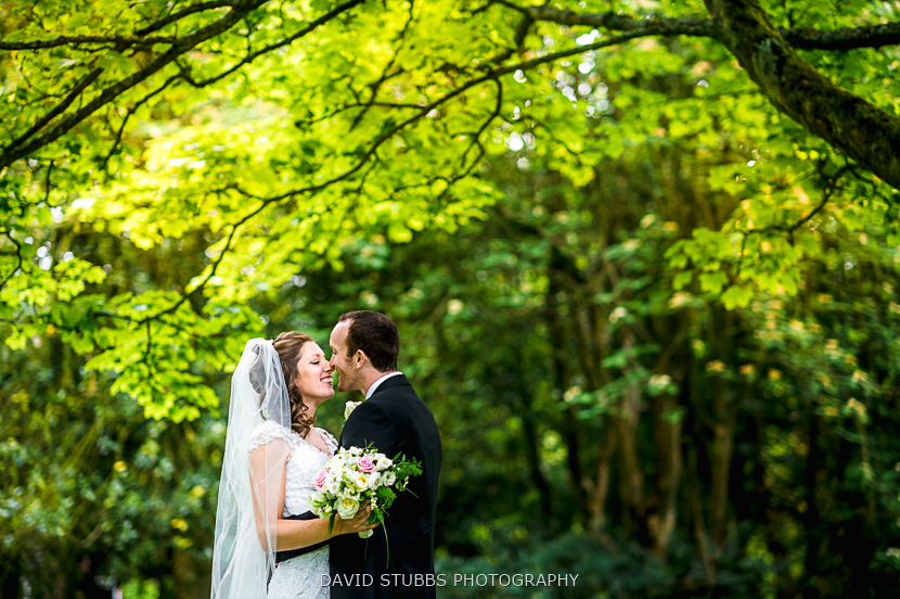 couple kiss in trees