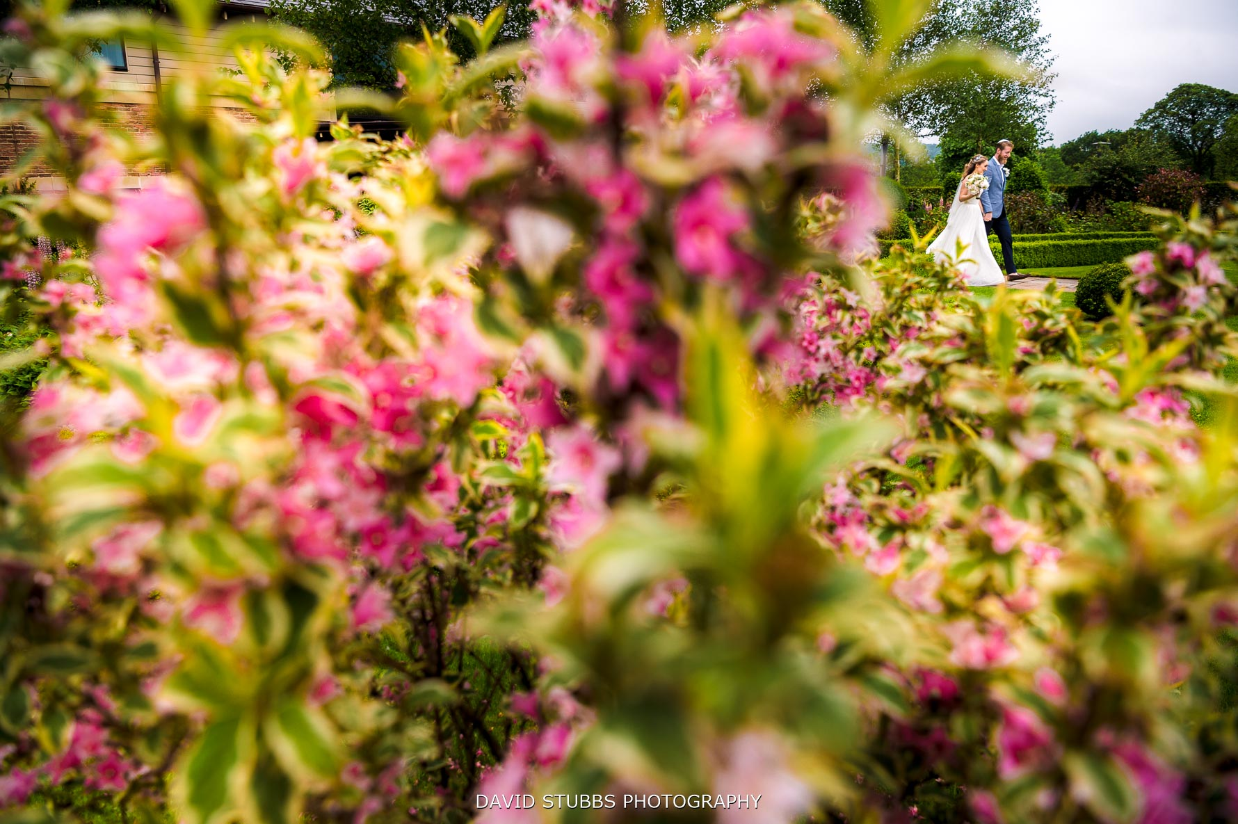 creative wedding photography using colour at Stanley house hotel
