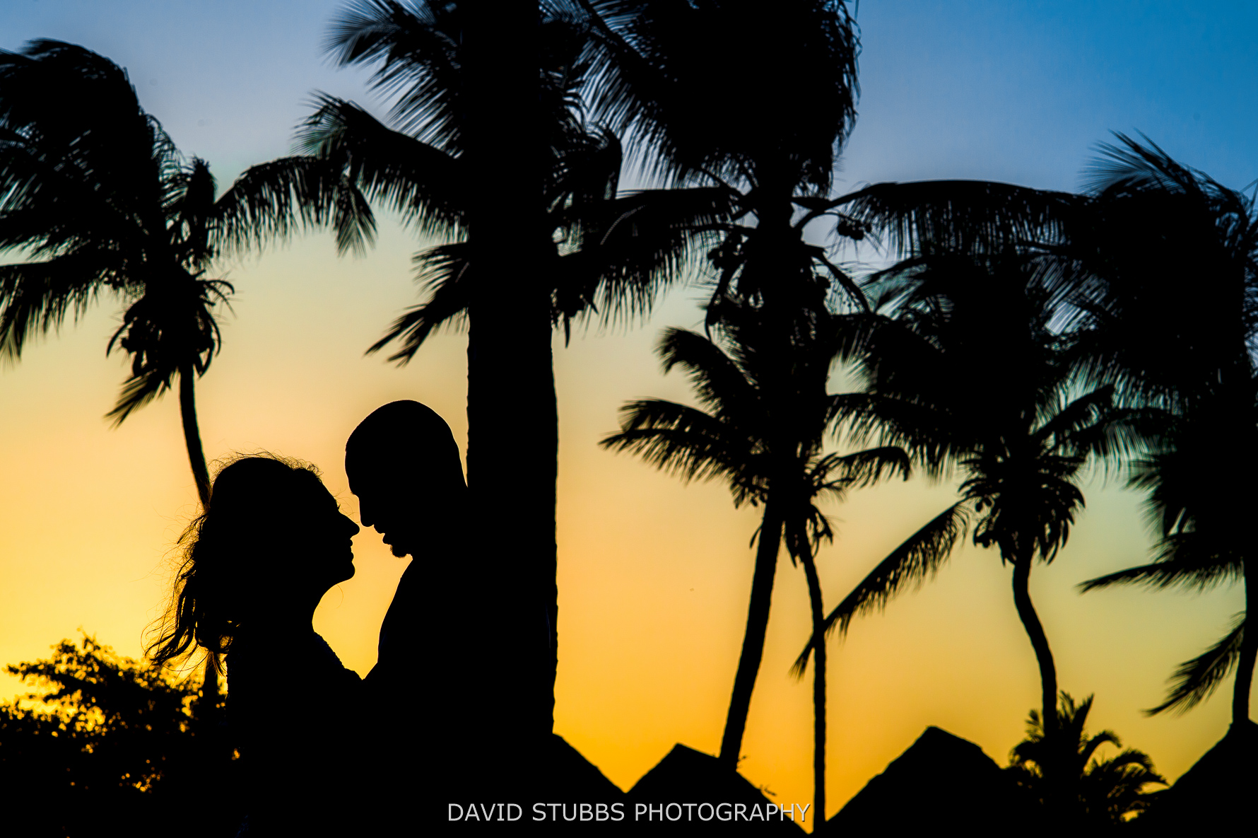 silhouette at the wedding