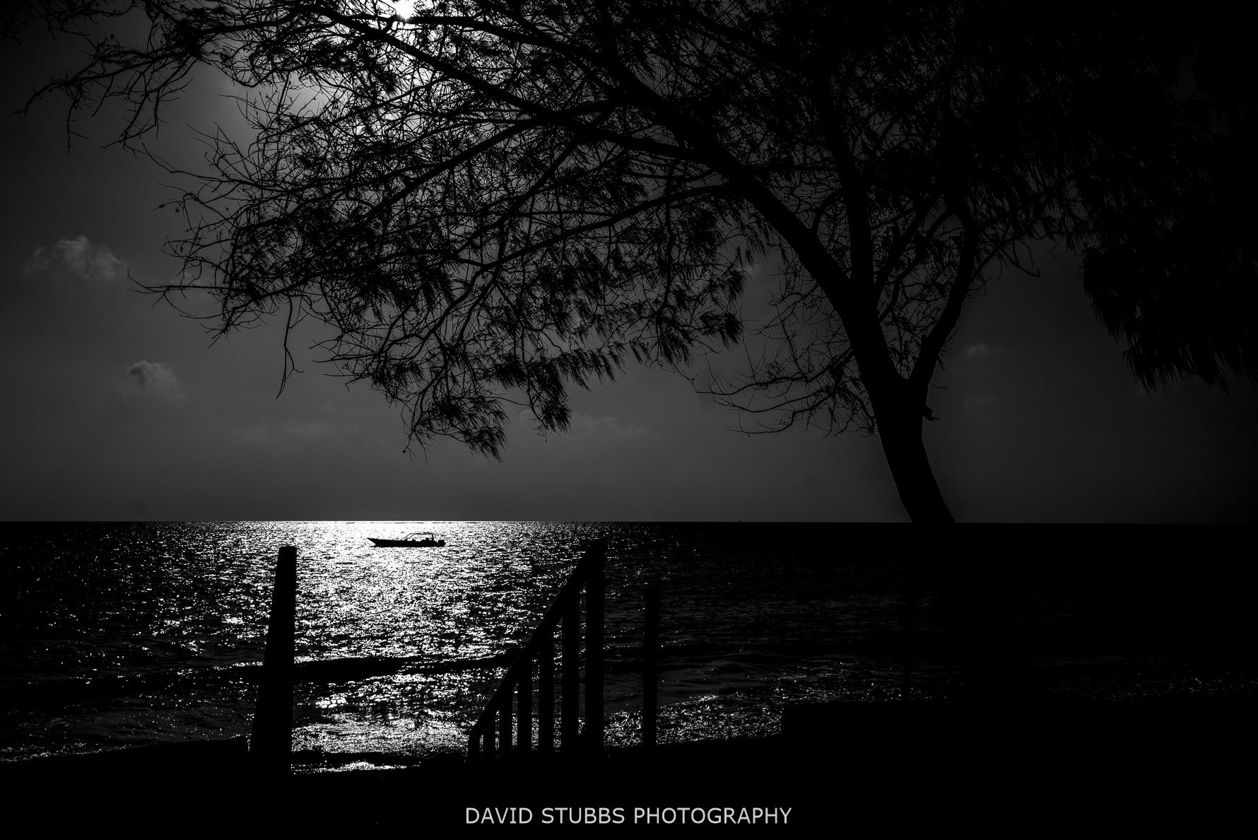 moon light on boat