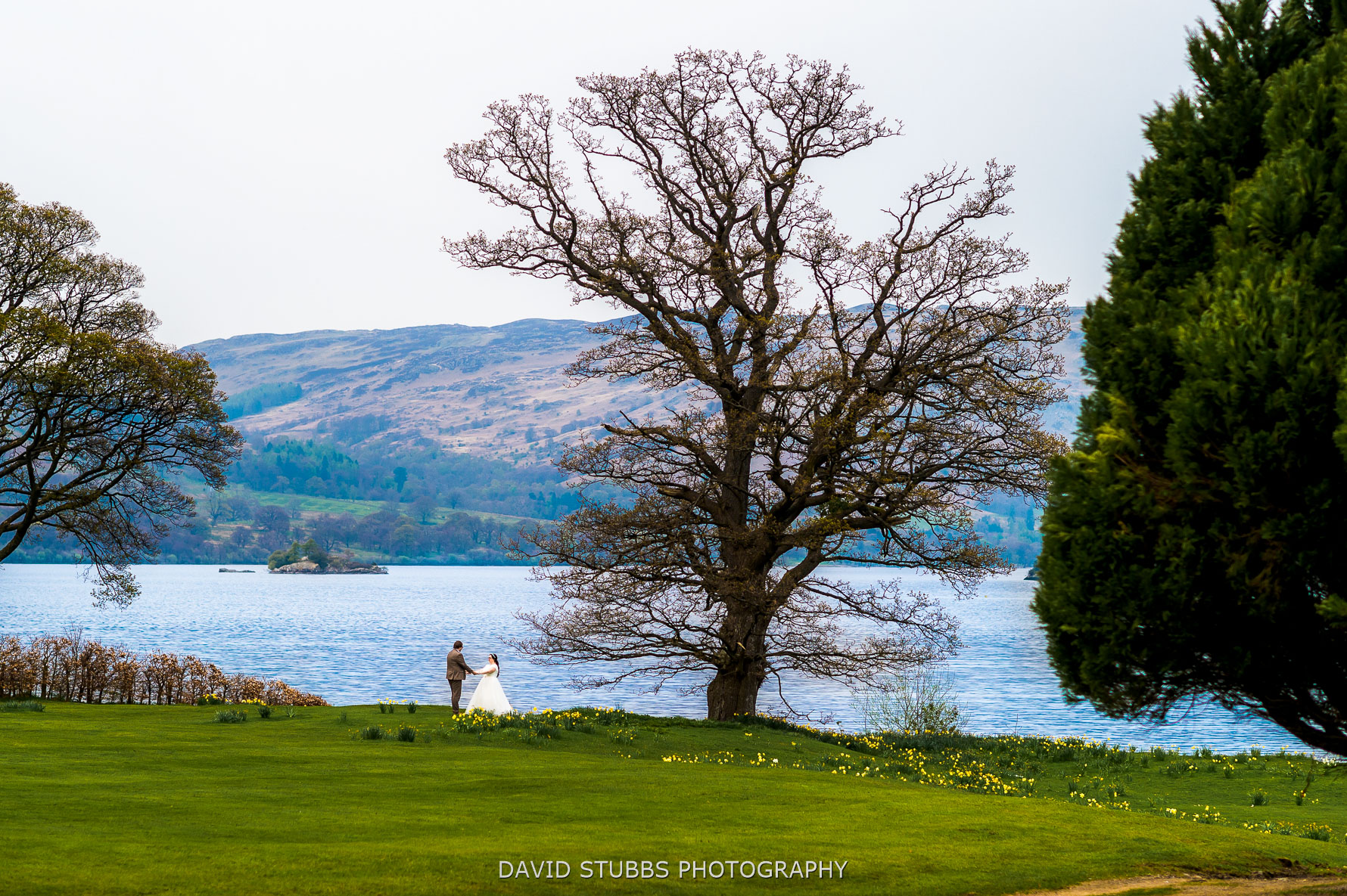 inn on lake photo
